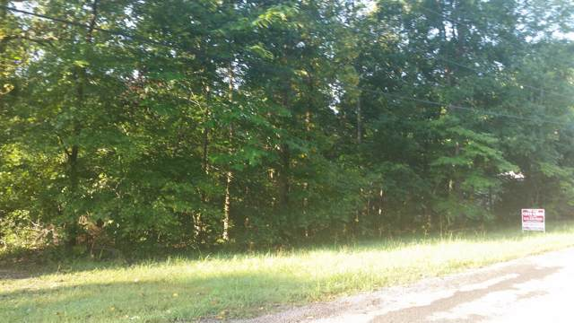 1008 Owen Ct, Ashland City, TN 37015 (MLS #RTC2067445) :: REMAX Elite