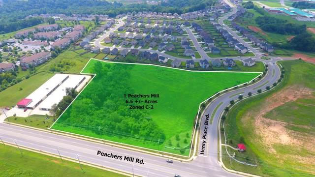 1 Peachers Mill Rd, Clarksville, TN 37042 (MLS #RTC2067603) :: CityLiving Group