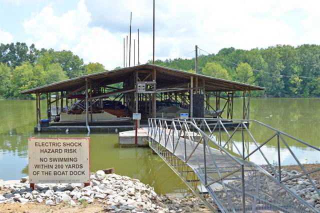392 Cypress Creek Marina Road, Linden, TN 37096 (MLS #RTC2068399) :: The Milam Group at Fridrich & Clark Realty