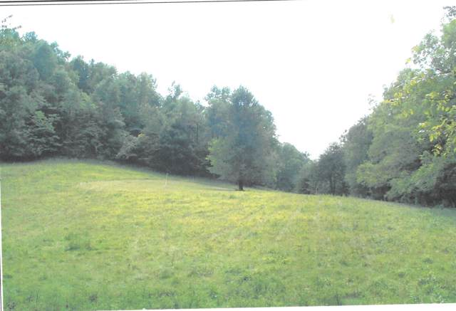 0 Cathey Ridge Rd, Manchester, TN 37355 (MLS #RTC2069931) :: DeSelms Real Estate