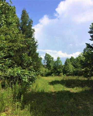 0 Bohannon Landing Rd, Sugar Tree, TN 38380 (MLS #RTC2070067) :: Felts Partners