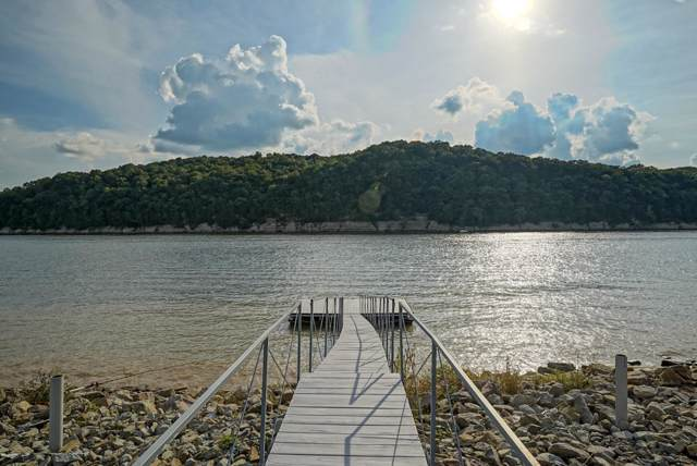1151 Hardin Bottom Riv Rd, Linden, TN 37096 (MLS #RTC2070483) :: CityLiving Group