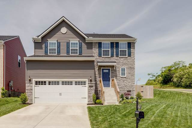 2900 Cherry Point Ln, Columbia, TN 38401 (MLS #RTC2071041) :: Village Real Estate
