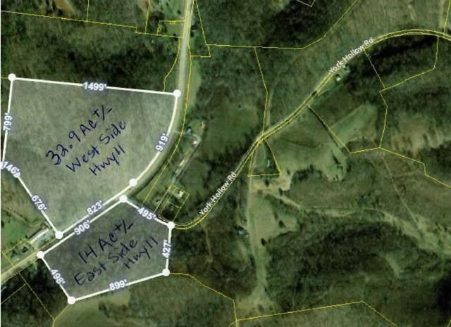 0 Minor Hill Hwy S, Goodspring, TN 38460 (MLS #RTC2071669) :: CityLiving Group