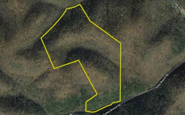 512 Turkey Branch Rd, Liberty, TN 37095 (MLS #RTC2072009) :: CityLiving Group