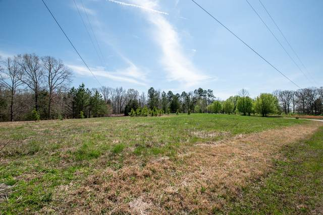 110 Commanche Dr, Hohenwald, TN 38462 (MLS #RTC2072349) :: Benchmark Realty