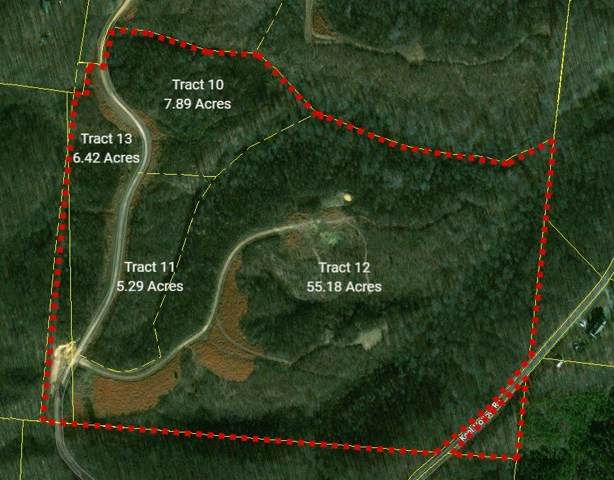 0 Keel Hollow Rd - Section D, Dover, TN 37058 (MLS #RTC2072614) :: Village Real Estate