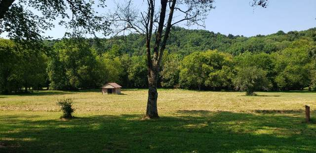 818 Haywood Rd, Pulaski, TN 38478 (MLS #RTC2073157) :: RE/MAX Choice Properties