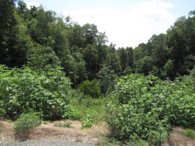 18 .60Ac  New Highway 52, Celina, TN 38551 (MLS #RTC2073328) :: REMAX Elite