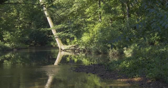 0 Big Swan Creek Rd, Hampshire, TN 38461 (MLS #RTC2073585) :: Village Real Estate