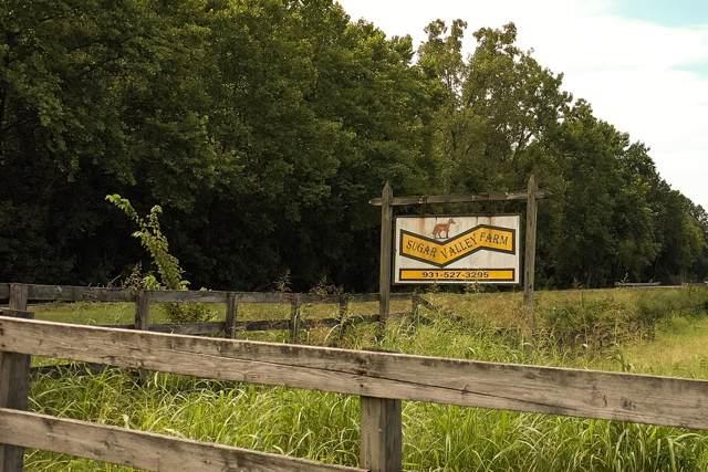 15616 Campbellsville, Lynnville, TN 38472 (MLS #RTC2073670) :: John Jones Real Estate LLC