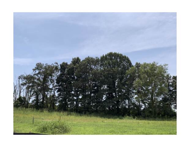 28 Reserve At Hickory Wild, Clarksville, TN 37043 (MLS #RTC2074084) :: Village Real Estate