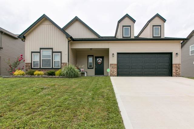 225 Towes Lane, Clarksville, TN 37043 (MLS #RTC2074113) :: John Jones Real Estate LLC