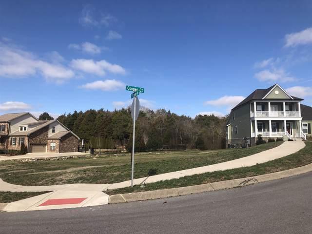 1001 Cooper Ct, Gallatin, TN 37066 (MLS #RTC2074117) :: DeSelms Real Estate