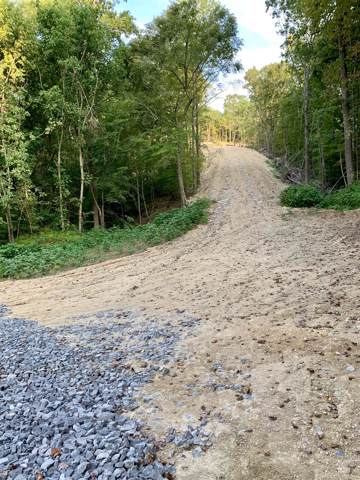 918 Bugg Hollow Rd, Gallatin, TN 37066 (MLS #RTC2074120) :: Village Real Estate
