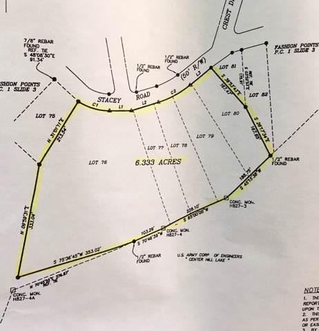 76 Stacey Rd, Smithville, TN 37166 (MLS #RTC2074122) :: Village Real Estate