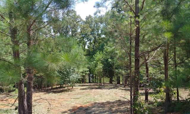177 Excalibur Trl, Cedar Grove, TN 38321 (MLS #RTC2074519) :: RE/MAX Choice Properties