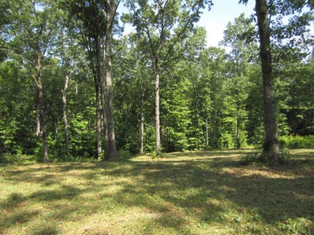 20 .23Ac Bearpen Rd, Jamestown, TN 38556 (MLS #RTC2074706) :: RE/MAX Homes And Estates