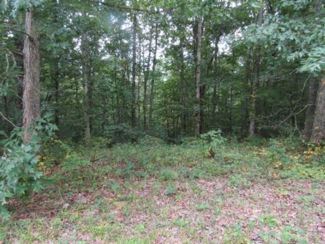 1 Backwoods Trl, Celina, TN 38551 (MLS #RTC2075376) :: REMAX Elite