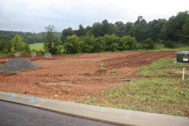 235 Timber Springs, Clarksville, TN 37042 (MLS #RTC2076537) :: REMAX Elite