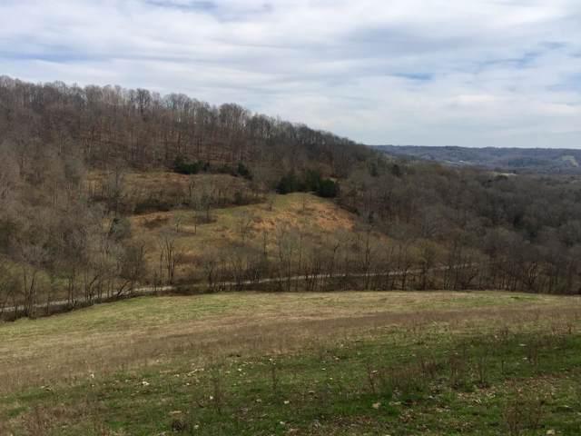 0 Wells Hollow Rd, Petersburg, TN 37144 (MLS #RTC2076648) :: Nashville on the Move