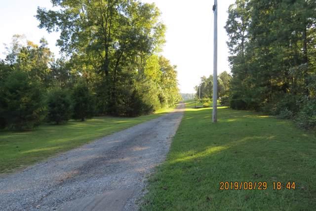 116 Deer Trl, Cumberland City, TN 37050 (MLS #RTC2076661) :: Village Real Estate