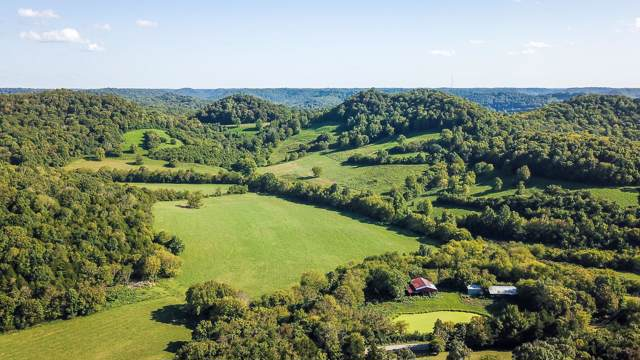 1960 Rock Springs Rd, Buffalo Valley, TN 38548 (MLS #RTC2076958) :: Berkshire Hathaway HomeServices Woodmont Realty