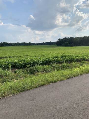 2463 W Green Hill Rd, McMinnville, TN 37110 (MLS #RTC2078001) :: Village Real Estate