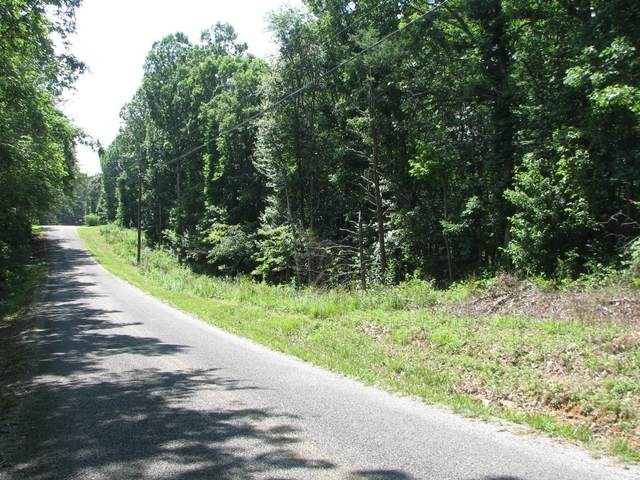 119 Central St, Tracy City, TN 37387 (MLS #RTC2078050) :: Stormberg Real Estate Group