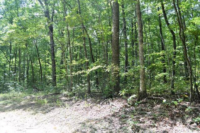 245 Lot Deer Run Rd, Altamont, TN 37301 (MLS #RTC2078090) :: Black Lion Realty
