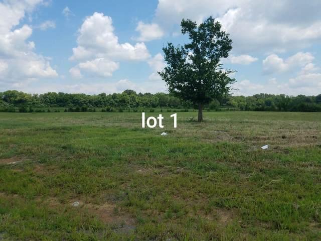 1049 Rhonda Dr, Christiana, TN 37037 (MLS #RTC2078506) :: Village Real Estate