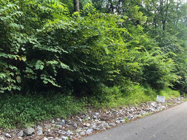 125 Bay Dr, Lancaster, TN 38569 (MLS #RTC2078672) :: Berkshire Hathaway HomeServices Woodmont Realty