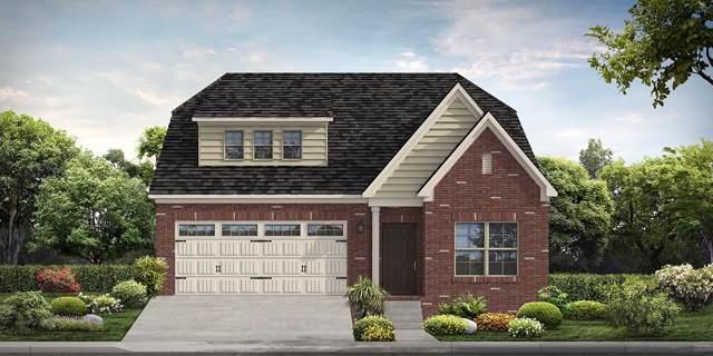 218 Telavera Drive, Lot 58, White House, TN 37188 (MLS #RTC2080003) :: Village Real Estate