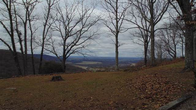 0 N Bluff Cir Lot 2, Monteagle, TN 37356 (MLS #RTC2080222) :: Felts Partners