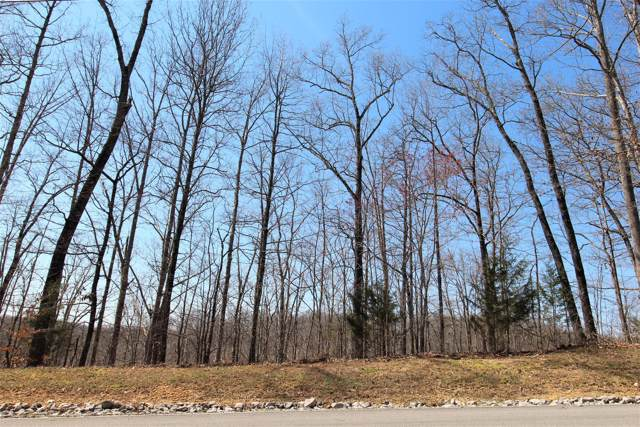 1 Harbor Green Pl- Lot 1, Sparta, TN 38583 (MLS #RTC2081239) :: REMAX Elite