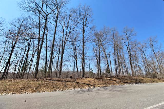2 Harbor Green Pl- Lot 2, Sparta, TN 38583 (MLS #RTC2081244) :: REMAX Elite
