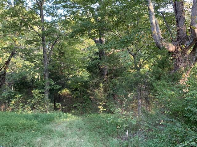 0 Lake Rd, Woodlawn, TN 37191 (MLS #RTC2082480) :: CityLiving Group