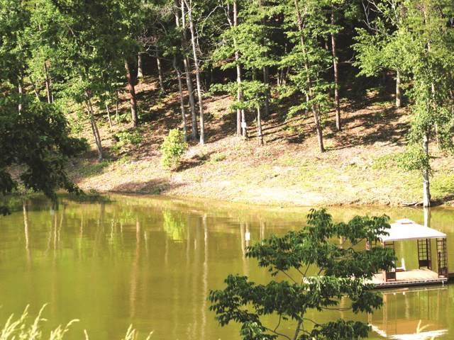 30 River View Drive, Dandridge, TN 37725 (MLS #RTC2083888) :: REMAX Elite