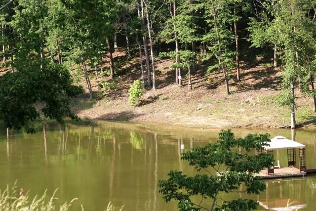 28 River View Drive, Dandridge, TN 37725 (MLS #RTC2083935) :: REMAX Elite