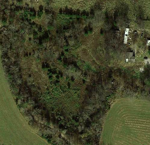 1230 Neal Rd, Watertown, TN 37184 (MLS #RTC2084142) :: REMAX Elite