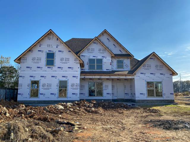 1307 Kaci Drive, Smyrna, TN 37167 (MLS #RTC2084274) :: Village Real Estate