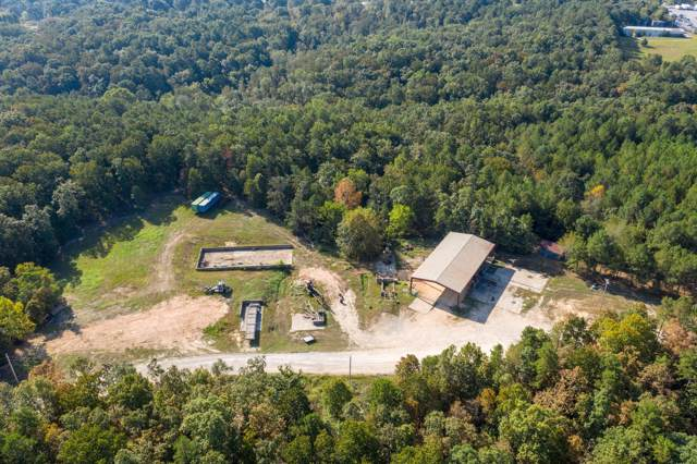 675 Lewis St, Hohenwald, TN 38462 (MLS #RTC2085013) :: Christian Black Team