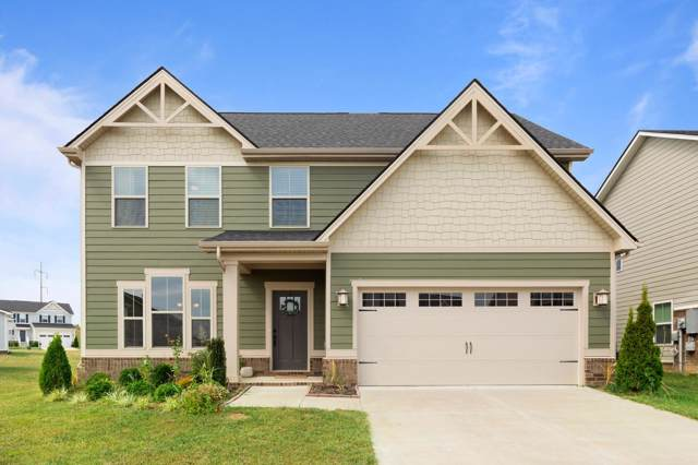 203 Audrey Dr, Spring Hill, TN 37174 (MLS #RTC2085417) :: Team Wilson Real Estate Partners