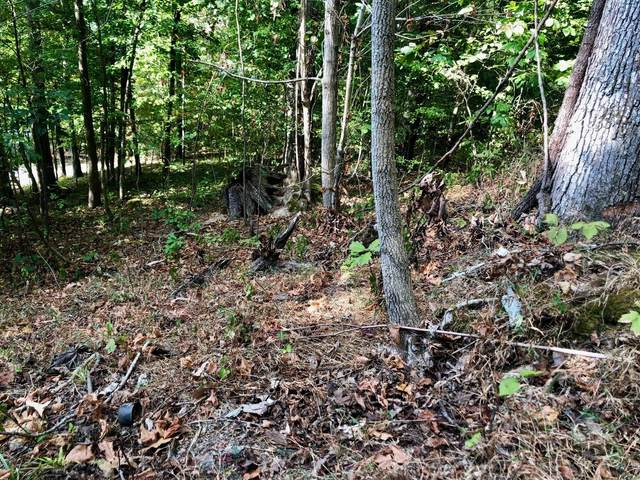 0 Kinnaird Access Rd Lot 169, Camden, TN 38320 (MLS #RTC2085625) :: Felts Partners