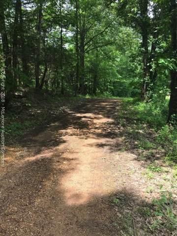 0 Old Nance Bend Rd, Savannah, TN 38372 (MLS #RTC2085989) :: Nashville on the Move