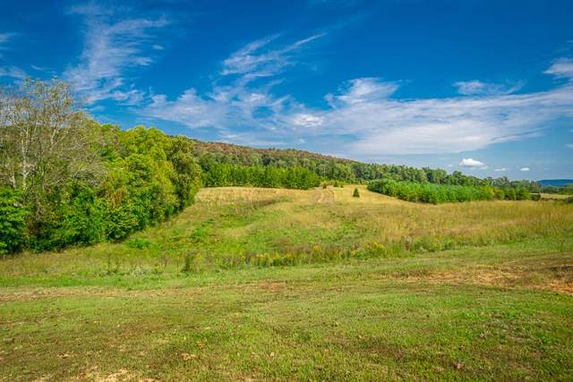 570 Safley Hollow Rd, McMinnville, TN 37110 (MLS #RTC2086129) :: REMAX Elite