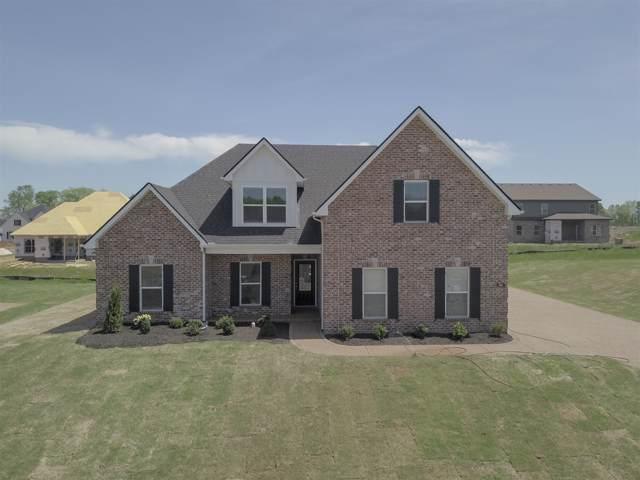 905 Paislee Raine Drive, Smyrna, TN 37167 (MLS #RTC2086138) :: Village Real Estate