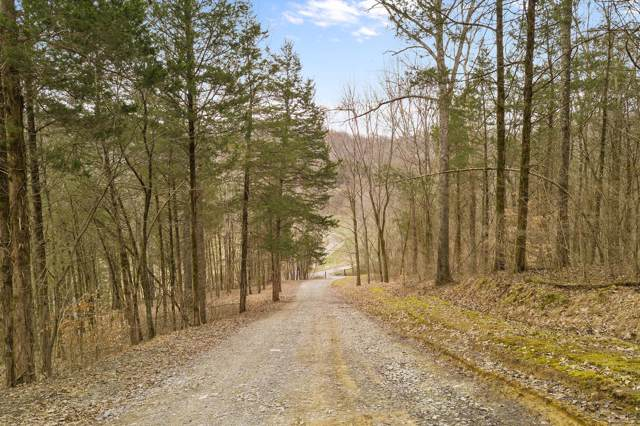 2239 Ingram Rd, Whites Creek, TN 37189 (MLS #RTC2086355) :: Nashville on the Move