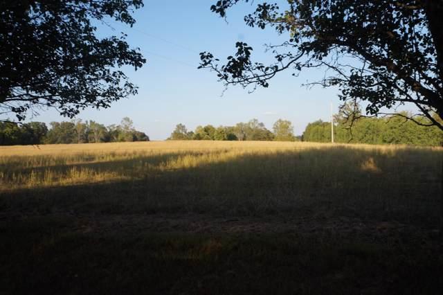 67 Shannon Rd, Leoma, TN 38468 (MLS #RTC2087205) :: Village Real Estate