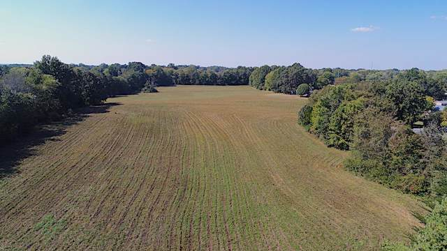 16 Blackpatch Dr, Springfield, TN 37172 (MLS #RTC2087365) :: REMAX Elite